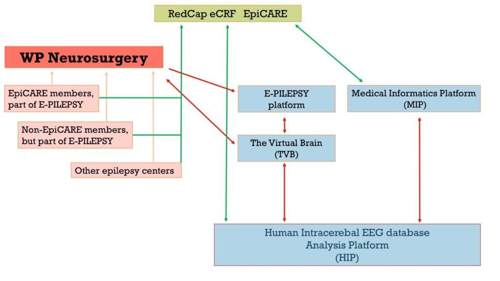 schéma e-pilepsy